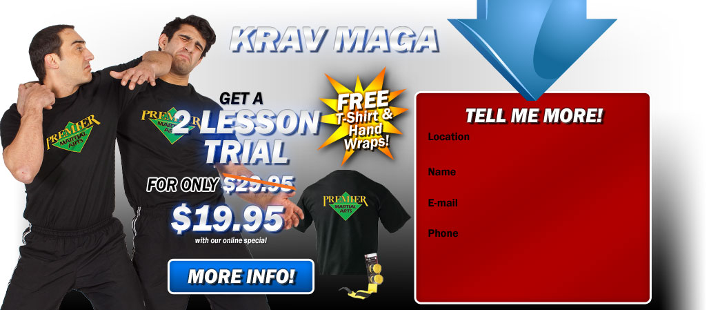 Krav Maga and kickboxing  2 lesson trial only $19.95!